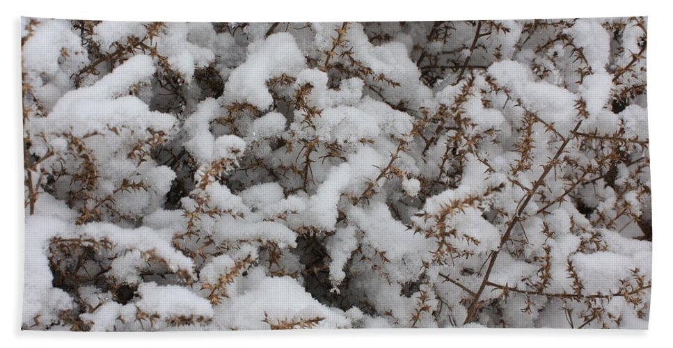 Snow Hand Towel featuring the photograph Winter's Contrast by Carol Groenen