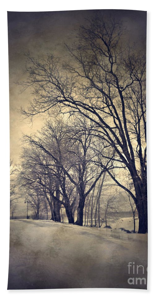 Texture Bath Sheet featuring the photograph Winter's Dark Thoughts by Tara Turner