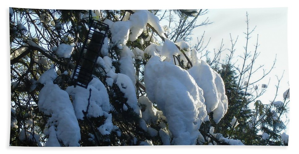Snow Landscape Snowy Trees Sun Sky Light Warm Cold Pattern Bath Sheet featuring the photograph Winter's Light by Catherine Robertson