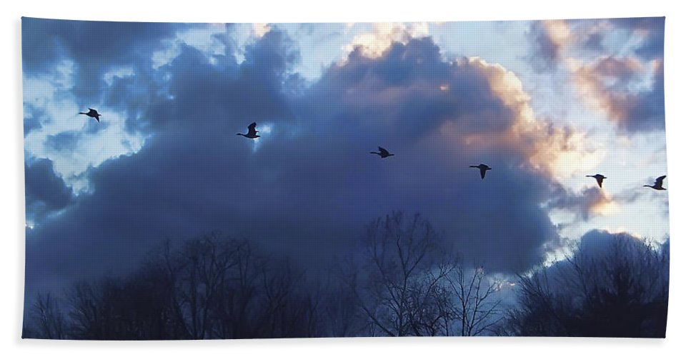 2d Bath Sheet featuring the photograph Winter's Solace by Brian Wallace