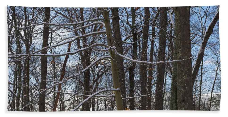 Trees Bath Sheet featuring the photograph Winter's Touch by Robyn Greaves