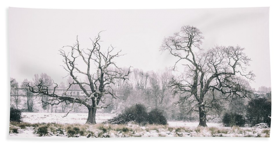 Winter Bath Towel featuring the photograph Wintery Morning by Martin Newman