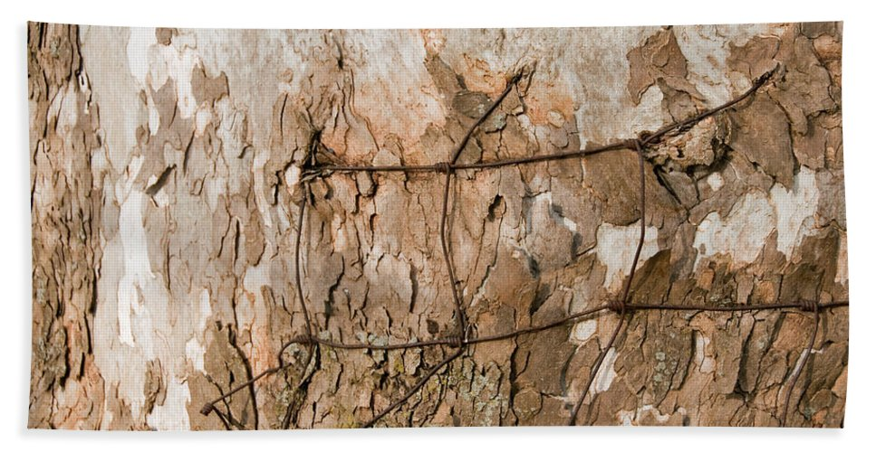 Wire Hand Towel featuring the photograph Wire In Wood by David Arment