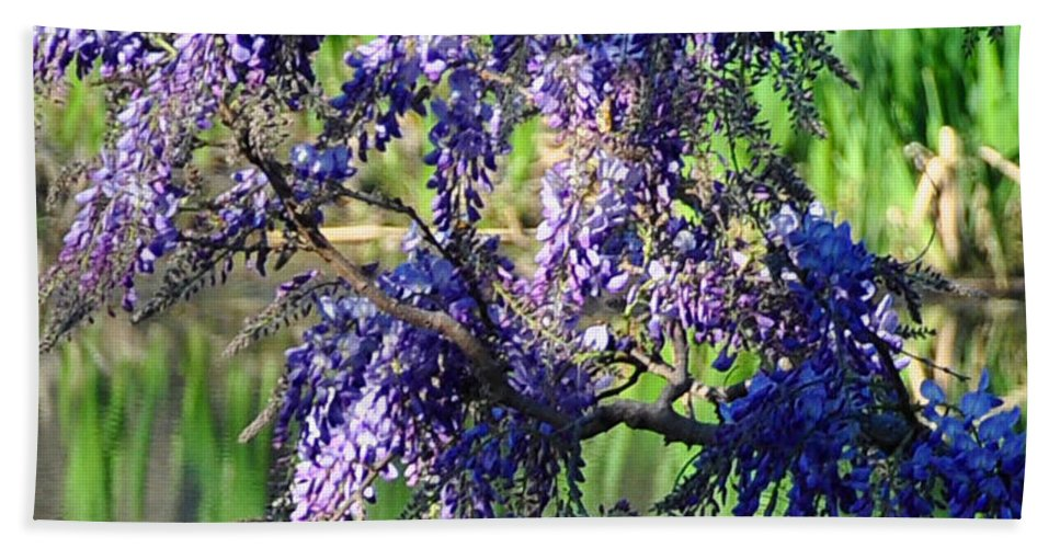 Blue Hand Towel featuring the photograph Wisteria by Terry Anderson
