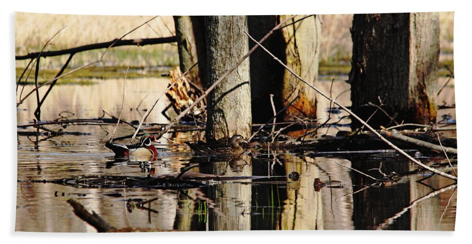 Wood Ducks Hand Towel featuring the photograph Wood Ducks by Debbie Oppermann