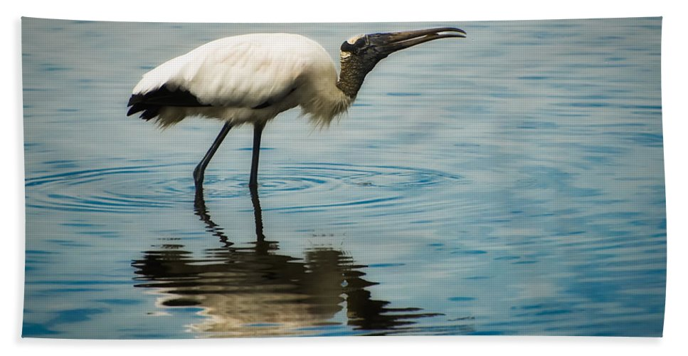 Stork Bath Towel featuring the photograph Wood Stork by Rich Leighton