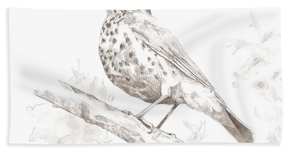 Bird Hand Towel featuring the drawing Wood Thrush by Abby McBride