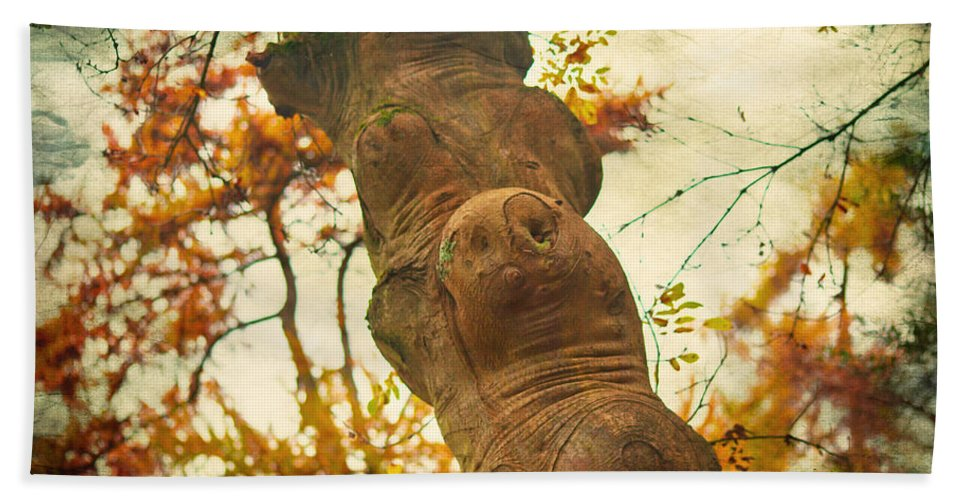 Wood Bath Sheet featuring the photograph Wooden Creatures by Alex Art and Photo