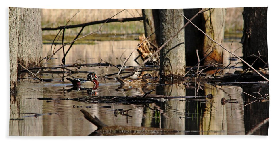 Wood Duck Hand Towel featuring the photograph Woodies by Debbie Oppermann