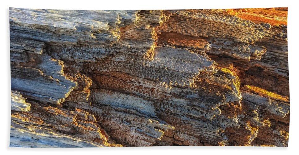 Landscape Bath Sheet featuring the photograph Woods 3 by Jonathan Nguyen