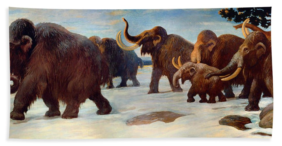 Painting Bath Sheet featuring the painting Wooly Mammoths Near The Somme River by Mountain Dreams