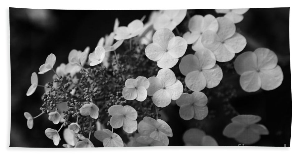 Hydrangea Bath Towel featuring the photograph Working Together by Amanda Barcon
