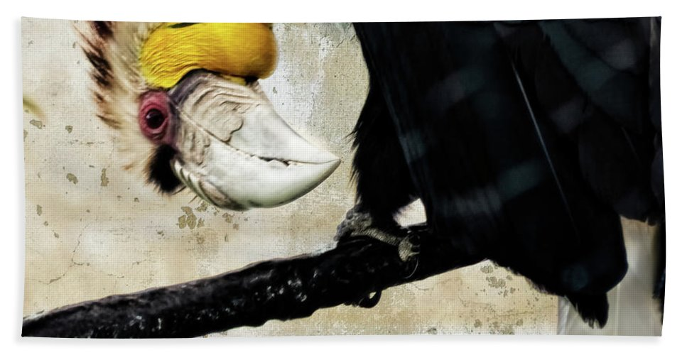 Bird Bath Sheet featuring the photograph Wreathed Hornbill Perching Against Vintage Concrete Wall Backgro by Sharon Minish