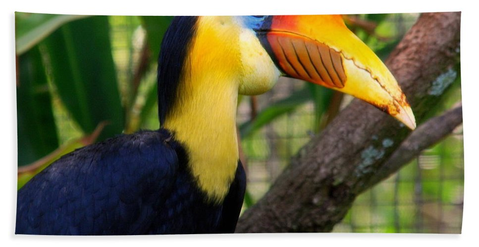 Wrinkled Hornbill Bath Sheet featuring the photograph Wrinkled Hornbill by Susanne Van Hulst