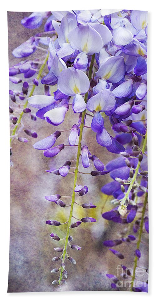 Wysteria Hand Towel featuring the photograph Wysteria by Jim And Emily Bush