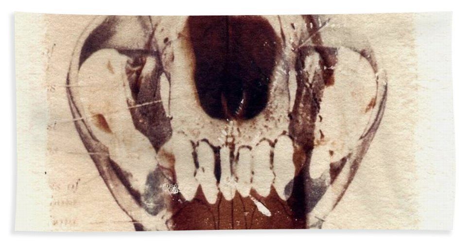 Polaroid Hand Towel featuring the photograph X Ray Terrestrial by Jane Linders