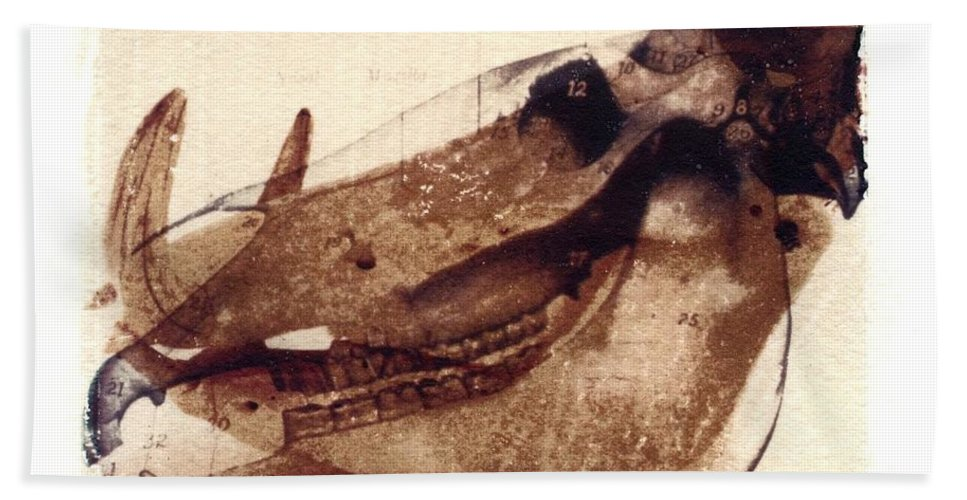 Polaroid Transfer Bath Sheet featuring the photograph X Ray Terrestrial No. 6 by Jane Linders