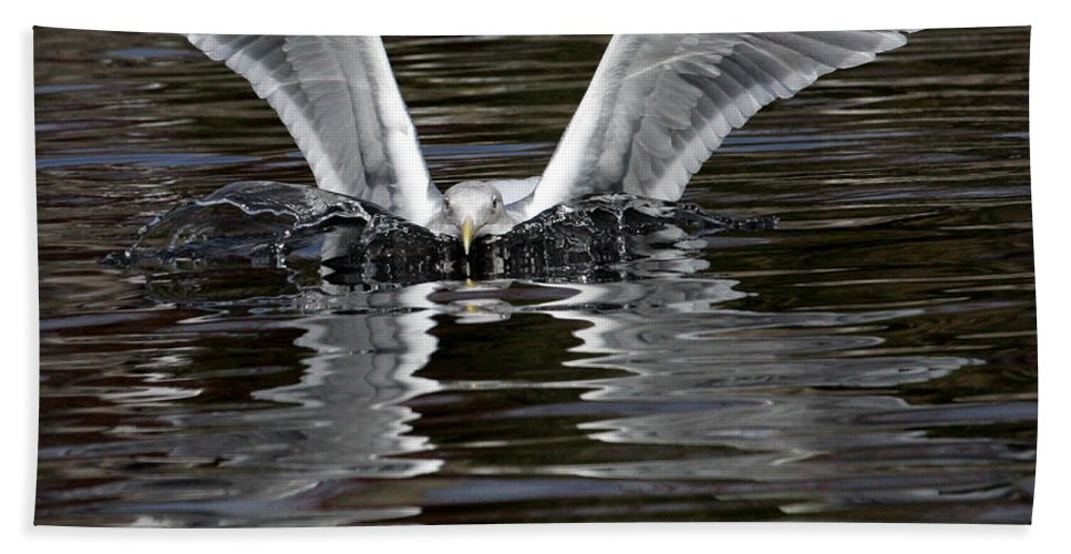 Sea Gull Hand Towel featuring the photograph X Wing by Randall Ingalls