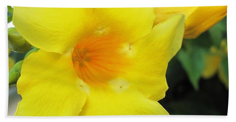 Hibiscus Bath Sheet featuring the photograph Yelllow by Ian MacDonald