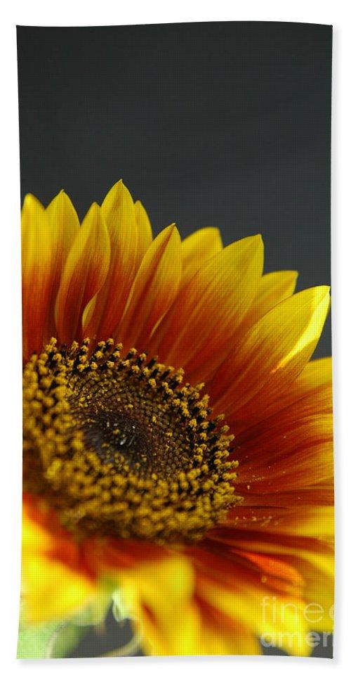 Yellow Bath Sheet featuring the photograph Yellow And Orange Gerber by Ilan Amihai