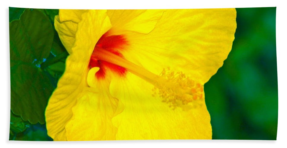 Flower Bath Towel featuring the photograph Yellow Blossom by Athala Carole Bruckner