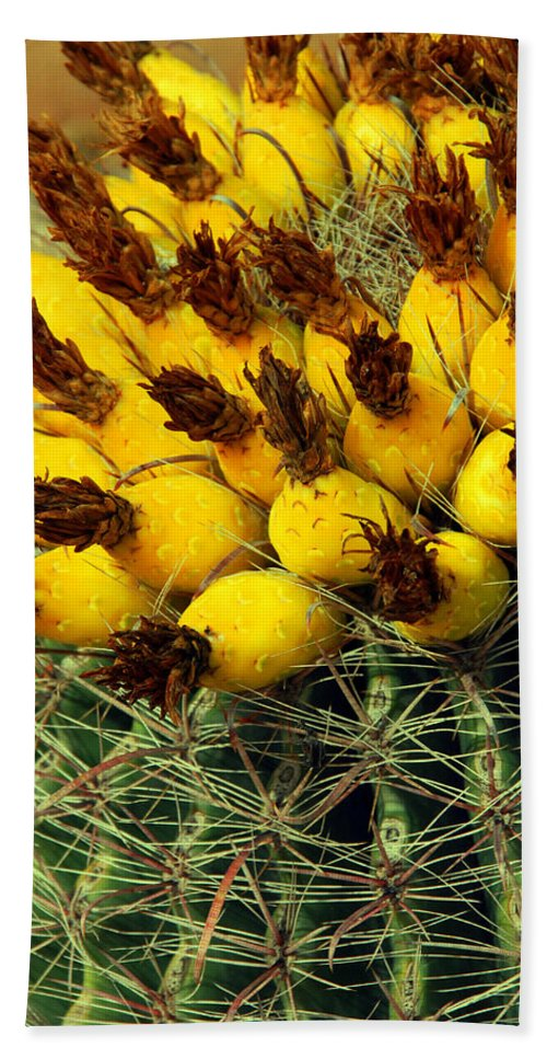 Cactus Bath Sheet featuring the photograph Yellow Cactus by Susanne Van Hulst