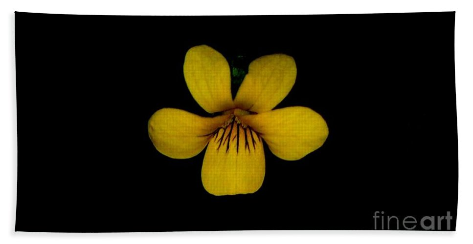 Landscape Bath Towel featuring the photograph Yellow Flower 1 by David Lane