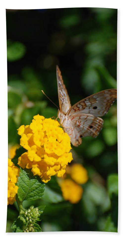 Butterfly Bath Towel featuring the photograph Yellow Flower Brown Fly by Rob Hans