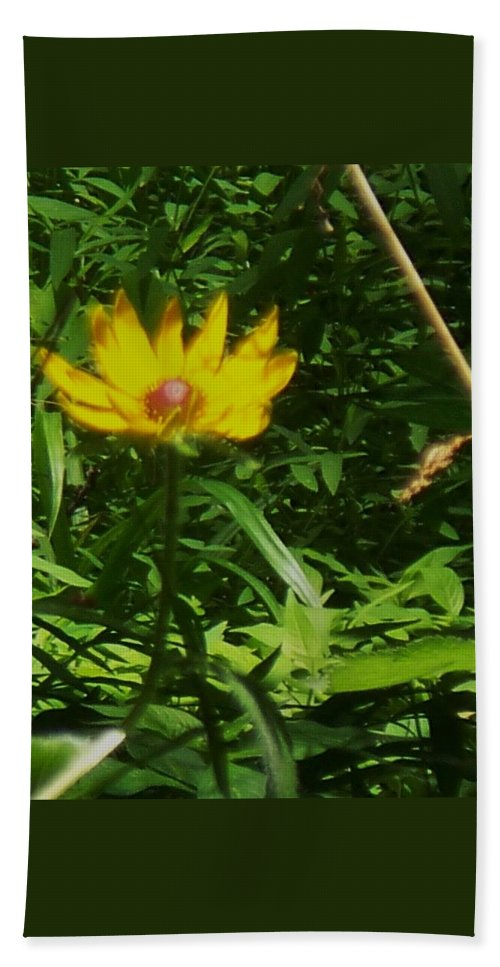 Flower Bath Sheet featuring the photograph Yellow Flower by Eric Schiabor