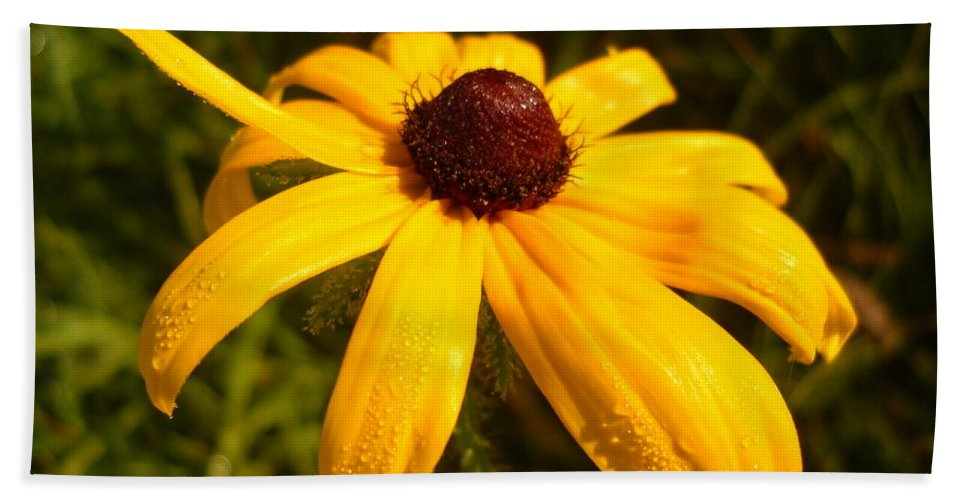Floral Hand Towel featuring the photograph Yellow Flower Good Morning by Kent Lorentzen