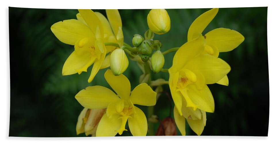 Macro Bath Towel featuring the photograph Yellow Flower by Rob Hans