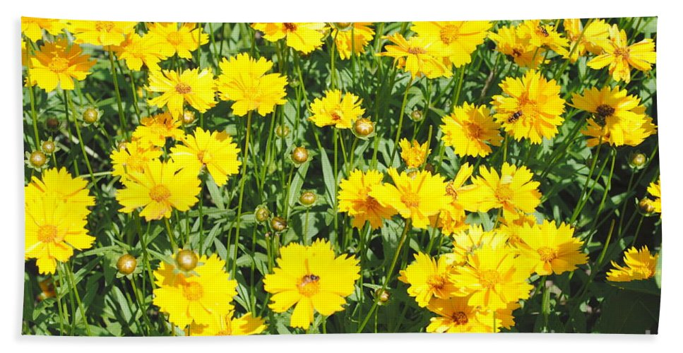 Yellow Hand Towel featuring the photograph Yellow Flowers by Jost Houk