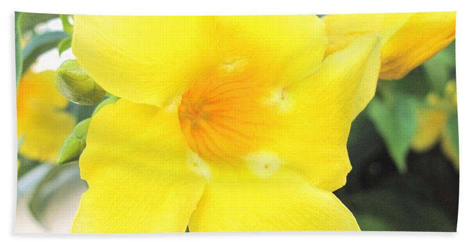 Yellow Bath Towel featuring the photograph Yellow Hibiscus St Kitts by Ian MacDonald