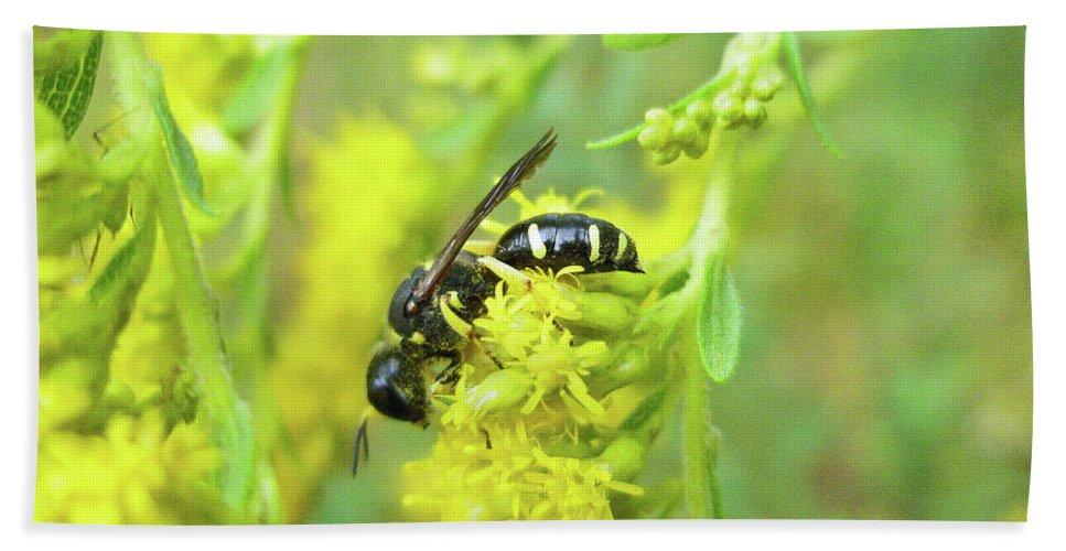 Wasp Bath Sheet featuring the photograph Yellow Jacket by Mother Nature