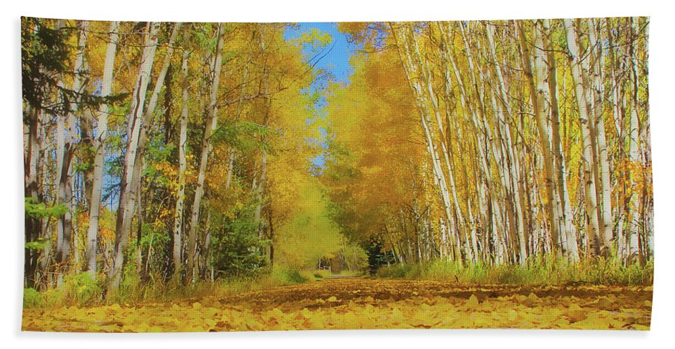 Hand Towel featuring the photograph Yellow Leaf Road by Amanda Smith