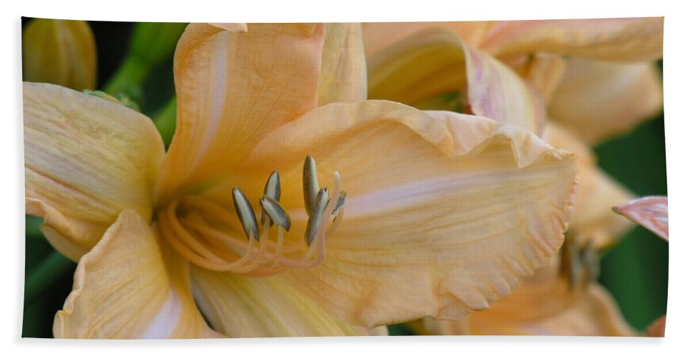 Yellow Bath Sheet featuring the photograph Yellow Lilly by Diane Greco-Lesser