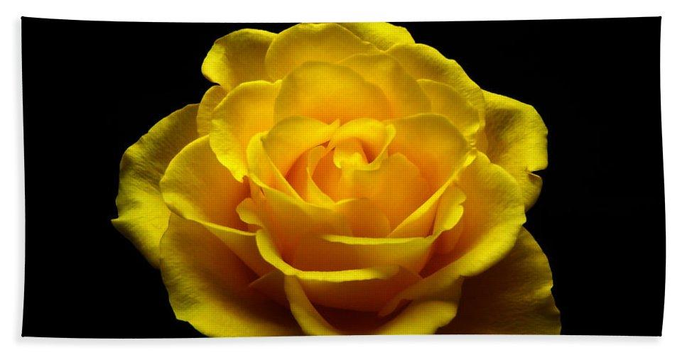 Yellow Hand Towel featuring the photograph Yellow Rose 4 by Johanna Hurmerinta