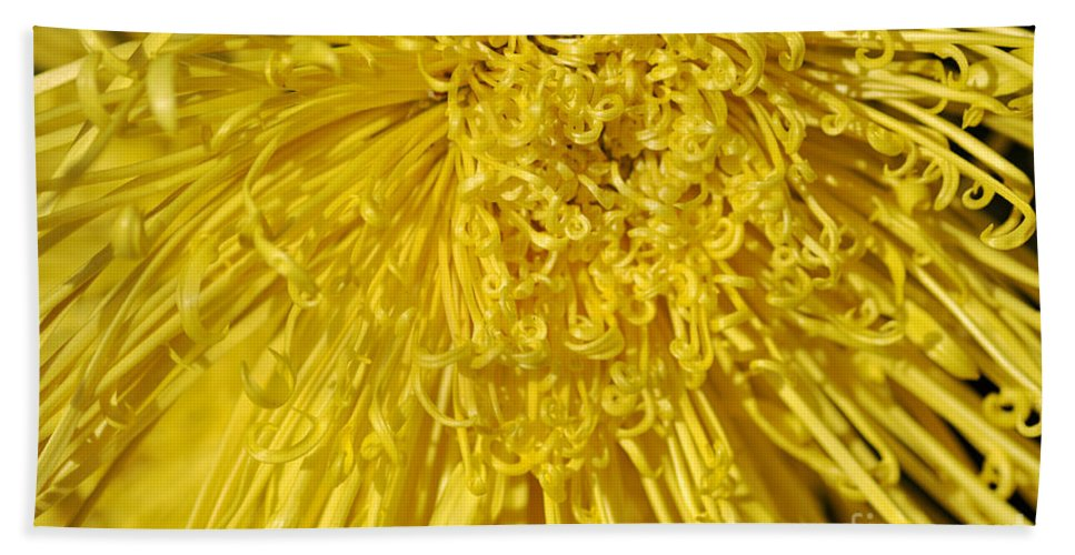 Clay Bath Towel featuring the photograph Yellow Strings by Clayton Bruster