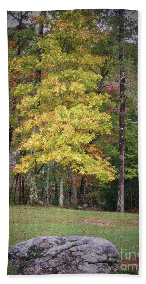 Fall Creek Falls Bath Sheet featuring the photograph Yellow Tree by Stanton Tubb