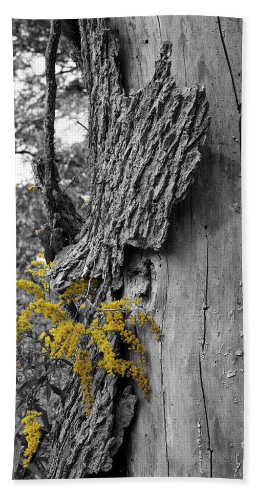 Bark Bath Towel featuring the photograph Yellow Tufts by Dylan Punke