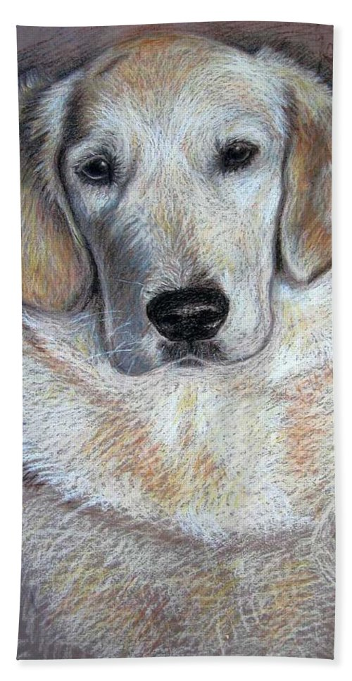 Dog Hand Towel featuring the pastel Young Golden Retriever by Nicole Zeug
