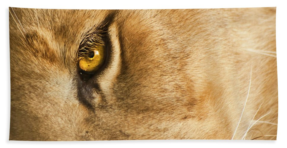 Lion Bath Sheet featuring the photograph Your Lion Eye by Carolyn Marshall