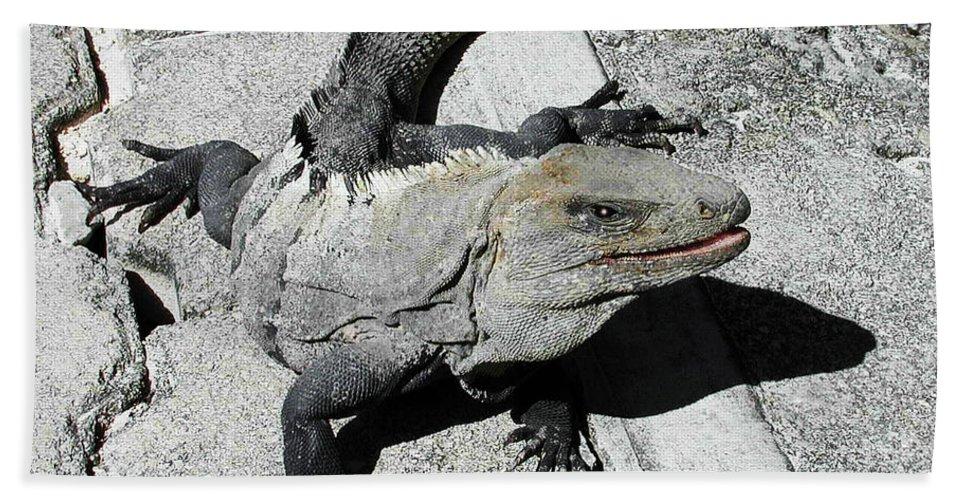 Yucatan Bath Sheet featuring the photograph Yucatan Lizard by Robert Ponzoni
