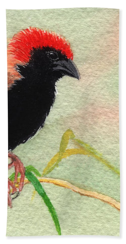 Bird Bath Towel featuring the painting Zanzibar Red Bishop by Lynn Quinn