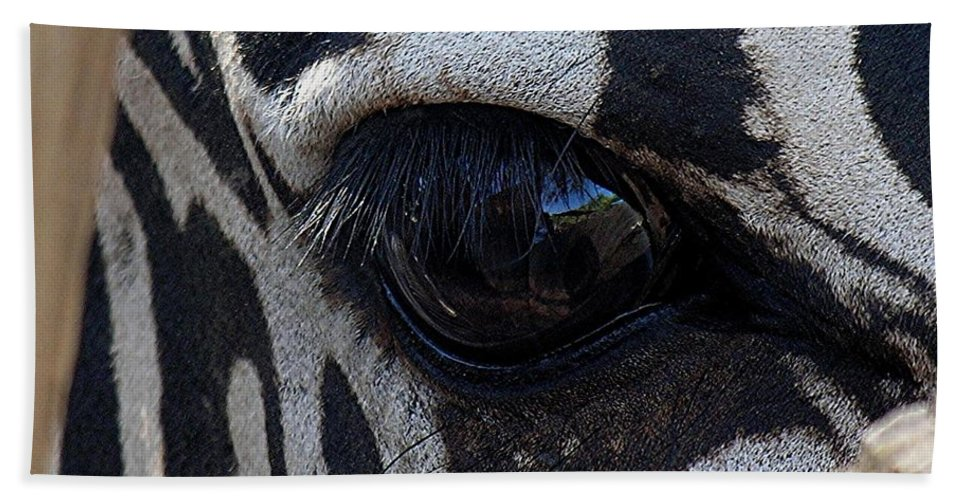 Zebra Hand Towel featuring the photograph Zebra Eye by Diane Greco-Lesser