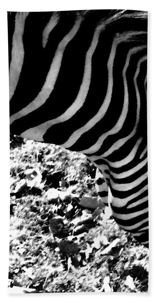 Zebra Bath Sheet featuring the photograph Zebra2 by September Stone