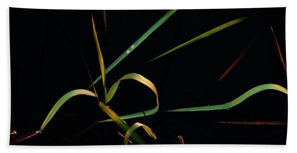 Water Hand Towel featuring the photograph Zen Photography by Susanne Van Hulst