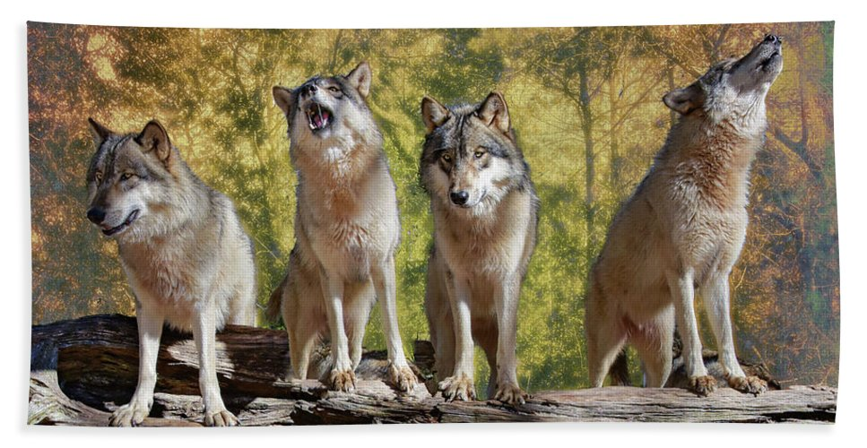 Wolf Bath Towel featuring the photograph Howling Wolves by Jeannee Gannuch