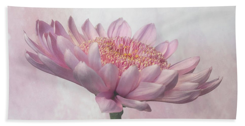 Flower Bath Sheet featuring the photograph Pretty In Pink by Sandi Kroll