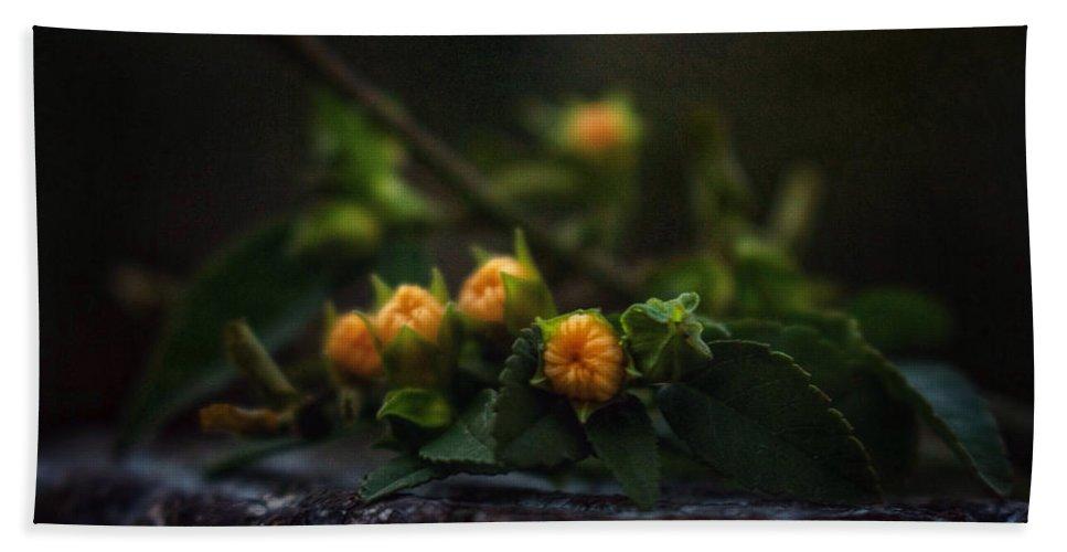 Flowers Bath Towel featuring the photograph Wildflower Bouquet by Brenda Wilcox aka Wildeyed n Wicked